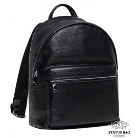 Рюкзак Tiding Bag NB52-0910A